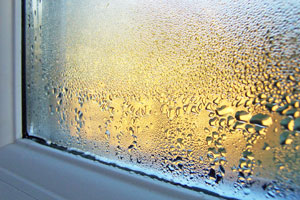 3 Ways High Indoor Humidity Levels Will Damage Your Home