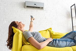 Beginner's Guide to Ductless Mini-Split Systems